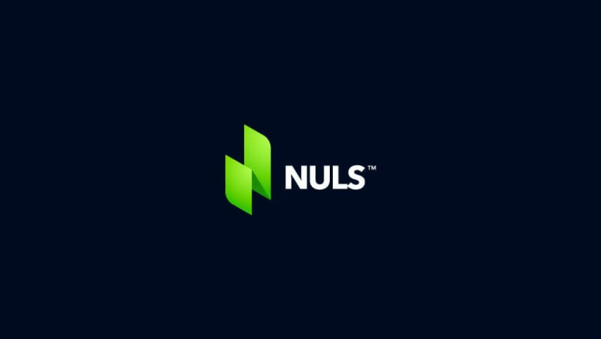 What Is NULS?
