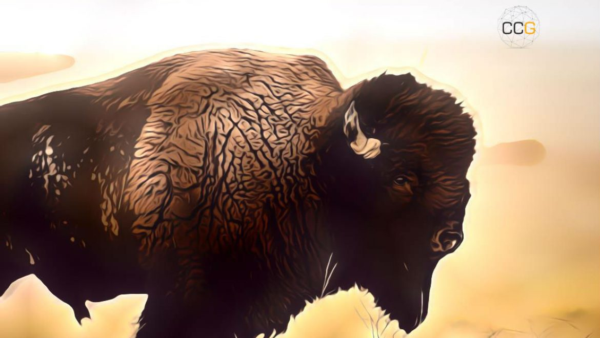 Top German Stock Exchange Subsidiary Announces Crypto Trading App Bison