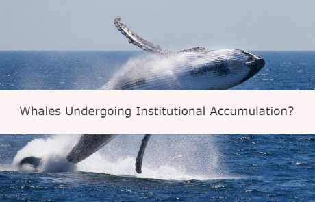 Bitcoin Price: Whales Like James Richman and Michael Novogratz Undergoing Institutional Accumulation?